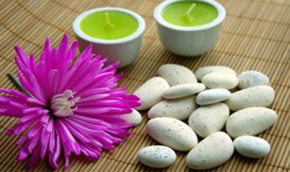 Ayurvedic Treatment Herbs